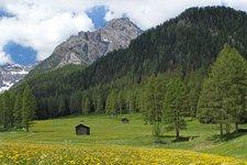 Spring in Val Pusteria
